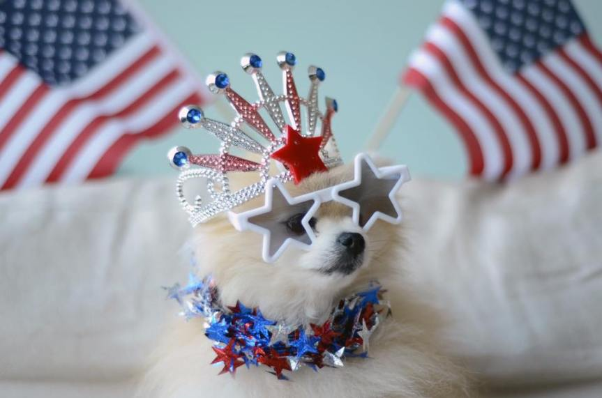 Just for fun: Happy 4th ofJuly