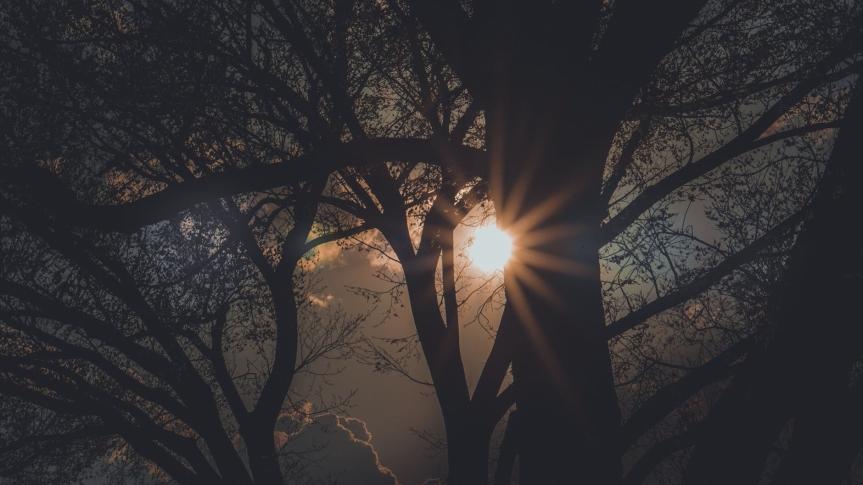 Sending you the sunshine… wherever youare