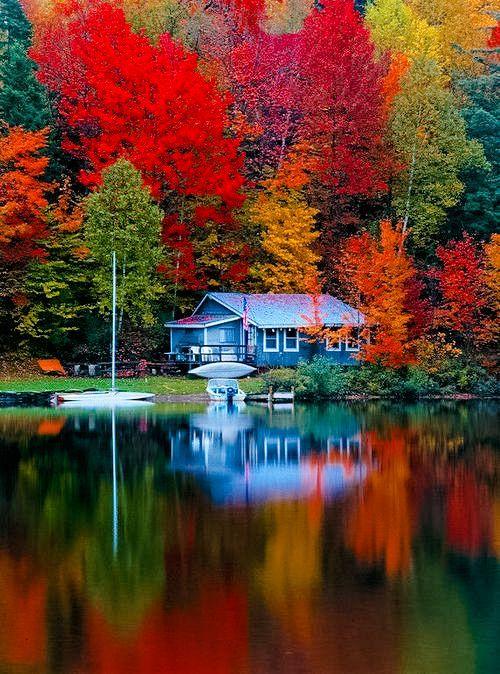 Accents of autumn onPinterest