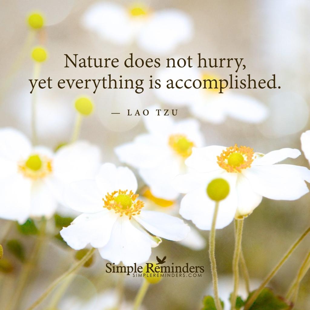 Lao Tzu, Tao Te Ching quotes