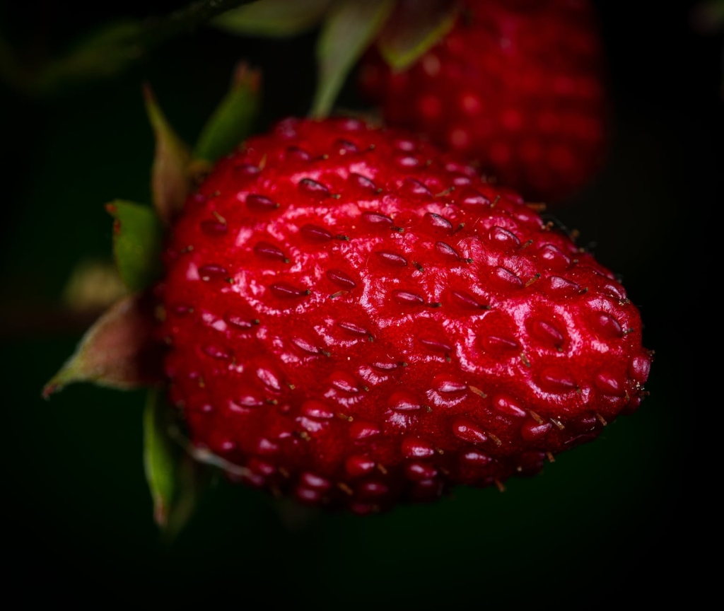 Red Strawberry, things that are red