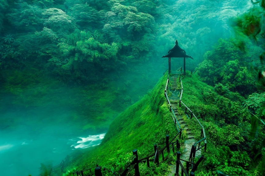 Beautiful green nature, things that are green