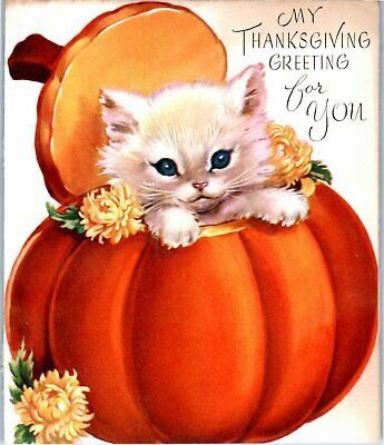 Too cute Thanksgivingkittens!
